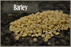 todayimight.com | Smoothie Ingredients | Barley