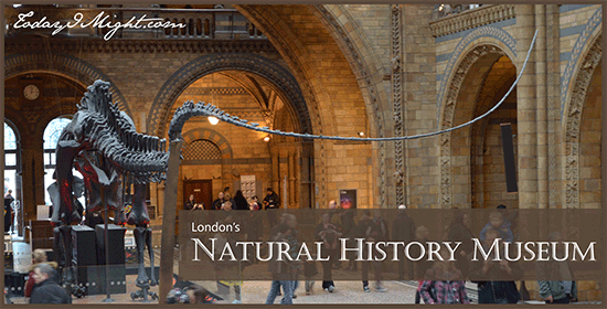 todayimight.com | London | Natural History Museum