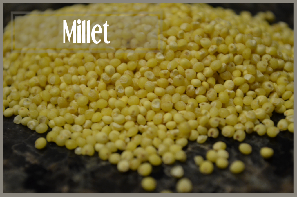 todayimight.com | Smoothie Ingredients | Millet