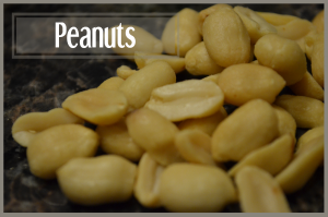 todayimight.com | Smoothie Ingredients | Peanuts