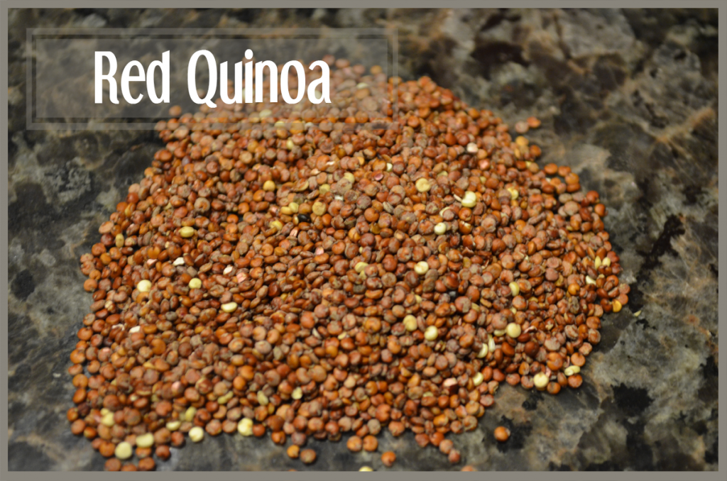 todayimight.com | Smoothie Ingredients | Red Quinoa