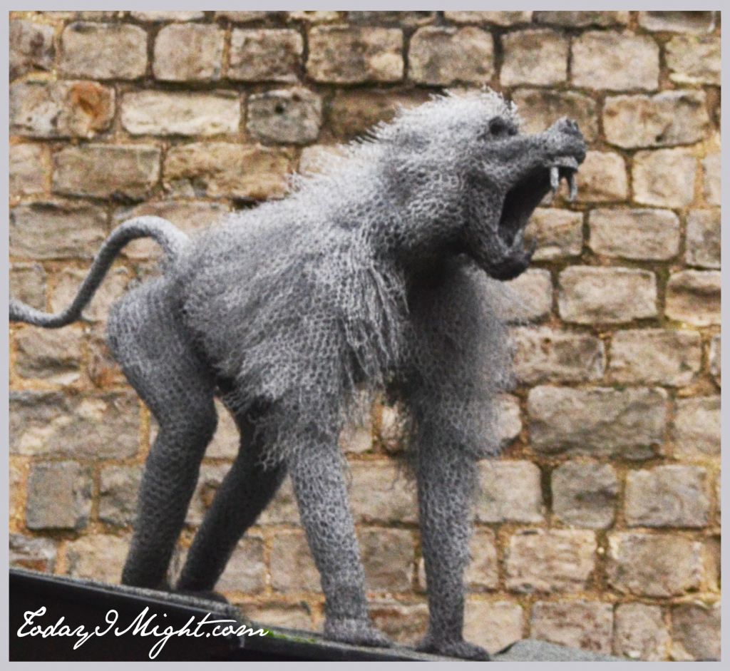 todayimight.com | London | Tower of London | Monkeys
