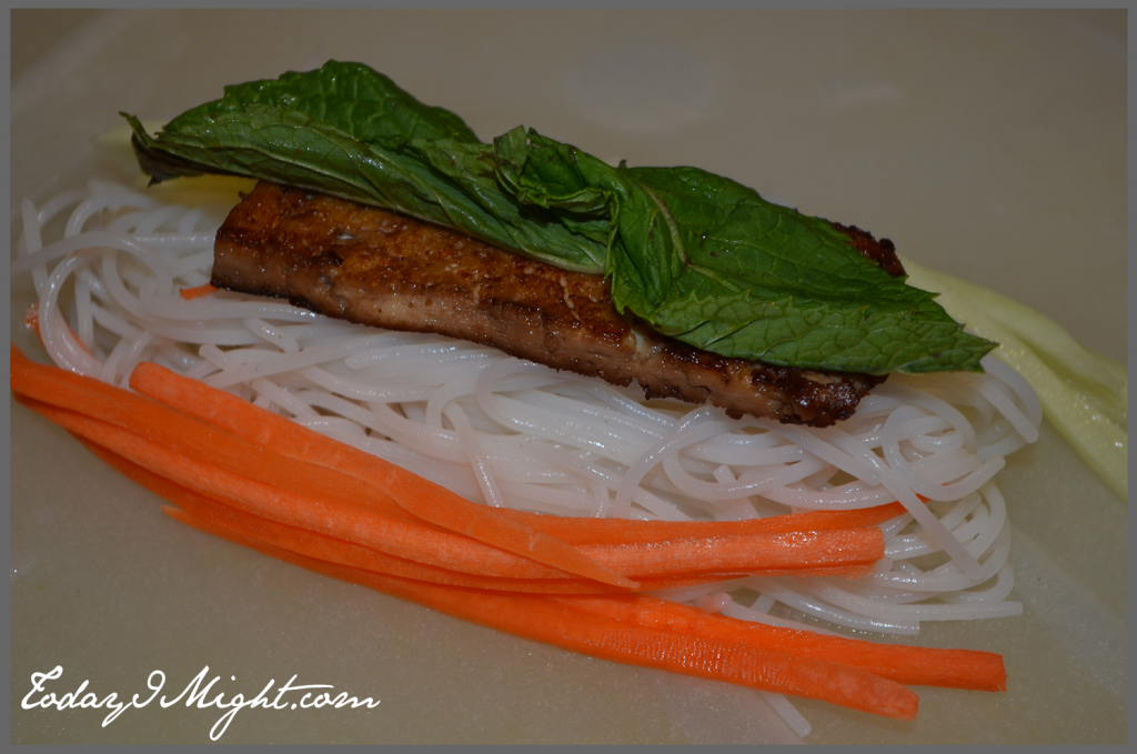 todayimight.com | Rolling Summer Rolls