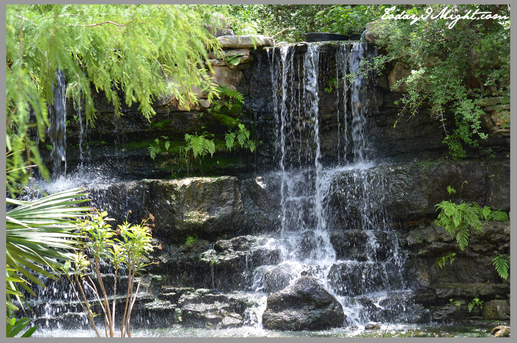 todayimight.com | Zilker Botanical Garden | Waterfall