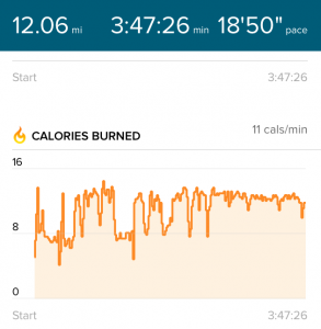 todayimight.com | Calories Burnt Walking 12 Miles