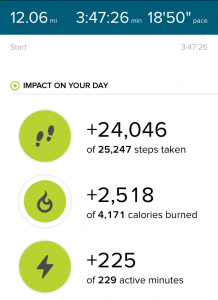 todayimight.com | Impact of Walking 12 Miles (24,000 Steps)