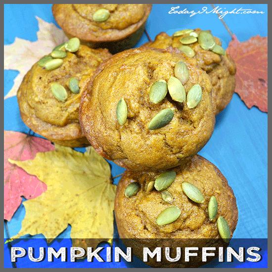 todayimight.com   Pumpkin Muffin Recipe